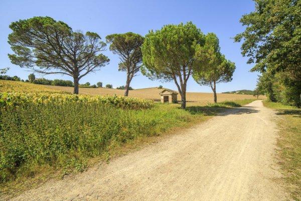 Randonnée La voie verte